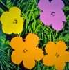 Andy Warhol - Flowers - Andy Warhol - 2633B