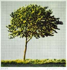 Frithioff Johansen - Træer fra mit regnehæfte 2  -  Frithioff Johansen - 2368B