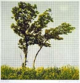 Frithioff Johansen - Træer fra mit regnehæfte 4  -  Frithioff Johansen - 2370B