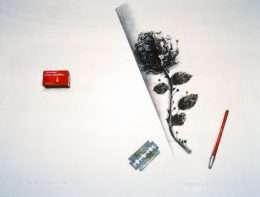 James Goodall - Pinning things down  -  James Goodall - 2227A