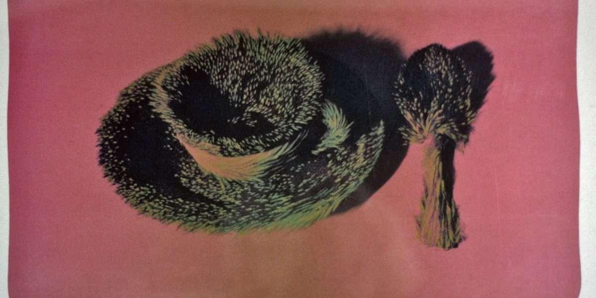 Meret Oppenheim - Skindforet tekop og teske