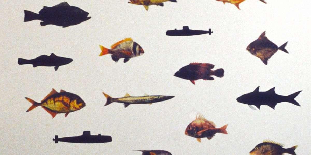 Peter Holst Henckel - Fish of the Arabian Gulf  -  Peter Holst Henckel - 4106A