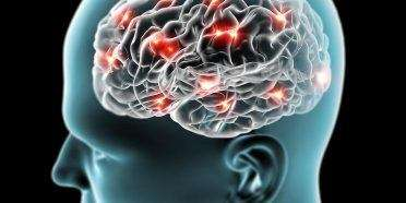 Kunst udvikler din hjerne